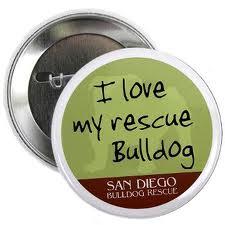 san-diego-bulldog-rescue